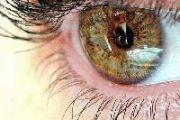 «Зрение - дар бесценный»